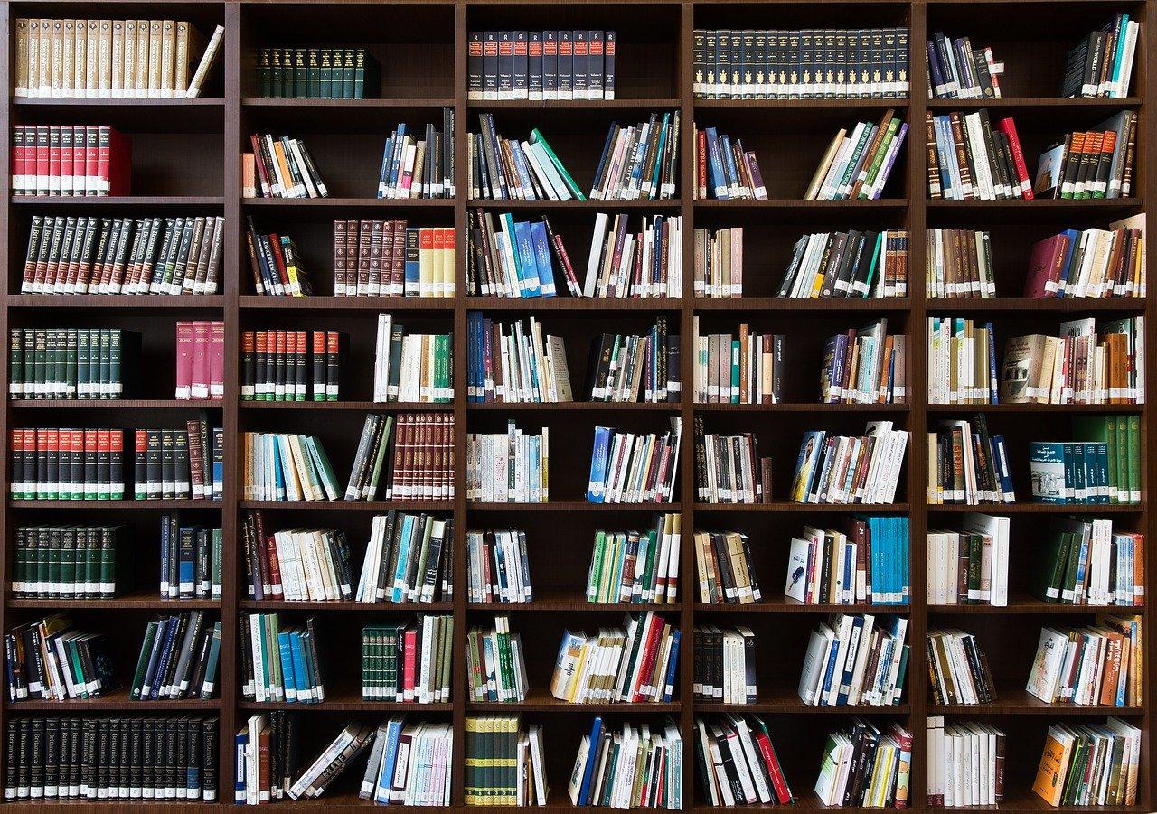 La biblioteca e il valore dei libri